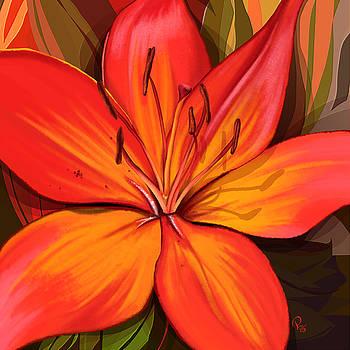 Lily by Pia Langfeld
