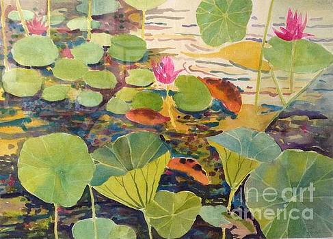 Lily Pods and Koi by Diane Renchler