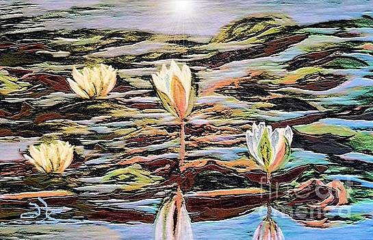 Lily Pond by Diana Chason