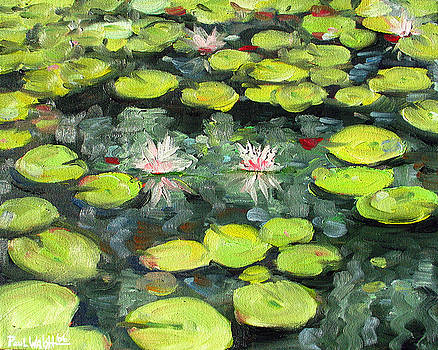 Lily Pond by Paul Walsh