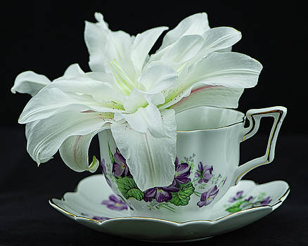 Lily with Teacup by Nancy Kirkpatrick