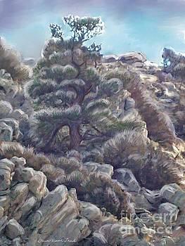Limber Pine Christmas by Dawn Senior-Trask