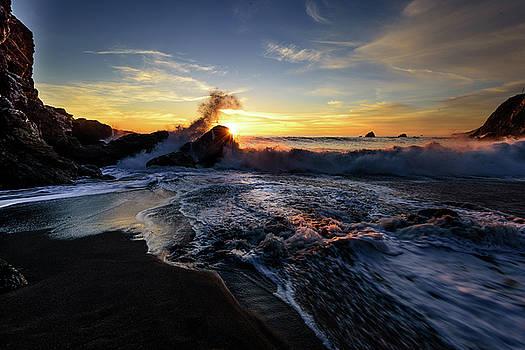 Limekiln State Park, Big Sur by Daniel Danzig