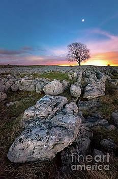 Mariusz Talarek - Limestone, Lonely Tree and Jupiter