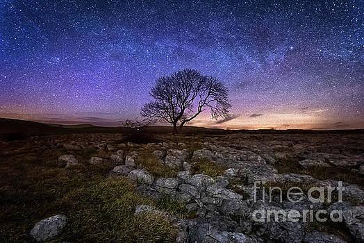 Mariusz Talarek - Limestone, Lonely Tree and Milky Way