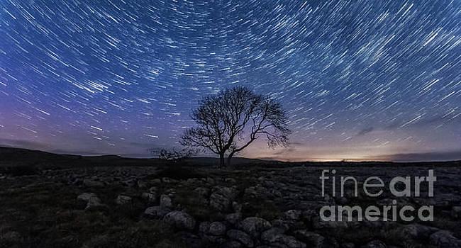 Mariusz Talarek - Limestone, Lonely Tree and star trails