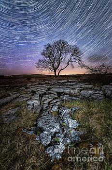 Mariusz Talarek - Limestone, Lonely Tree, Aurora Borealis and star trails