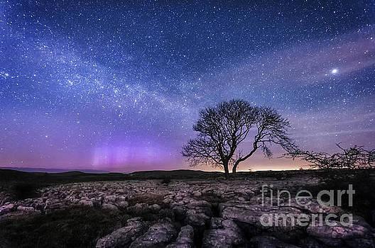 Mariusz Talarek - Limestone, Lonely Tree,  Milky Way and Aurora Borealis