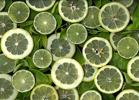 Limons by Christian Slanec