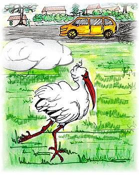 Limping ibis by Carol Allen Anfinsen