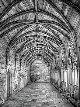 Lincoln Cathedral Cloisters by Linsey Williams