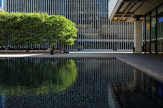 Lincoln Center's Green Oasis by Cornelis Verwaal