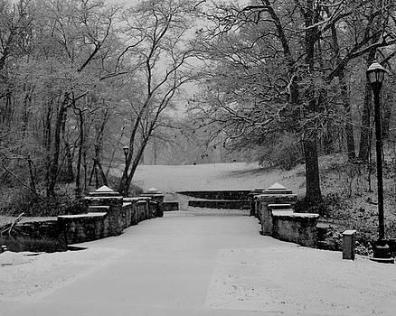 Lincoln Park Bridge in Winter by Sue Houston
