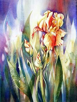 Linda's Iris by Judith Hallbeck Meyeraan