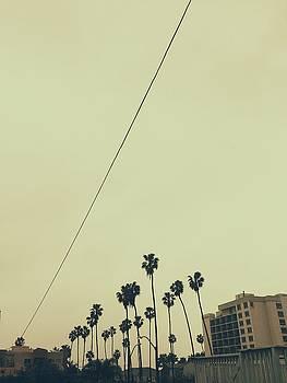 Line by Cortney Herron