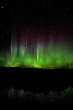 Dale Kauzlaric - Line of Aurora Pillars