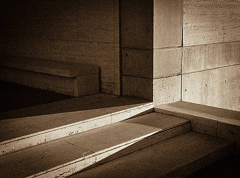 Lines  and  Shadows by Samuel M Purvis III