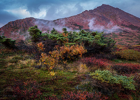 Lingering Autumn Reds by Tim Newton