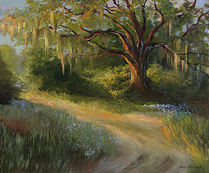 Lingering Light by Jane Woodward