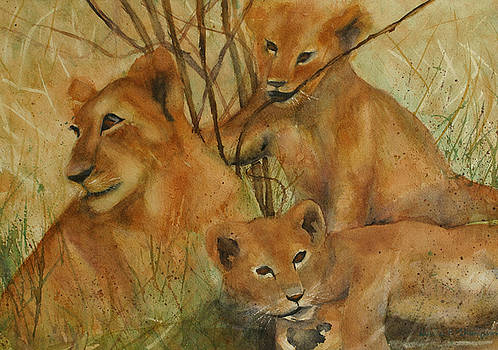 Lion and Cubs by Denice Palanuk Wilson