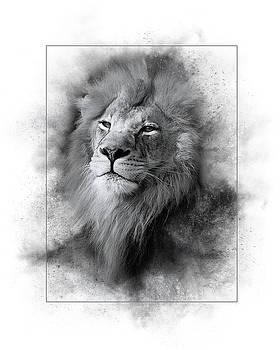 Lion Black White by Marty Maynard