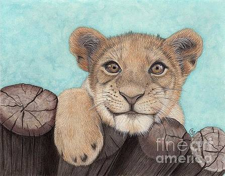 Lion Cub - Jungle Baby by Sherry Goeben