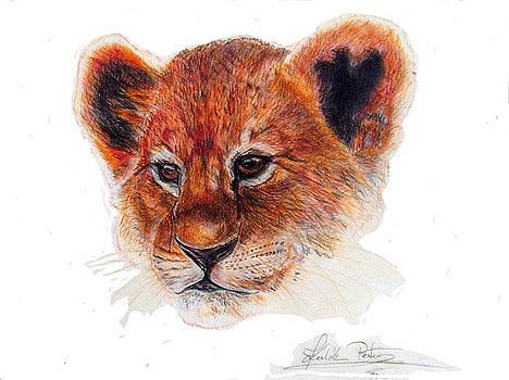 Lion cub by Peter Kulik