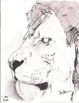 Lion by Darryl Barnes