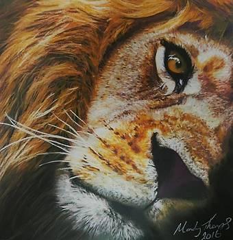 Lion Eye by Mandy Thomas