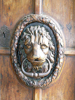 Lion Face Door by Noelle  Kimberley