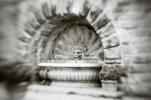 Marilyn Hunt - Lion Head Fountain