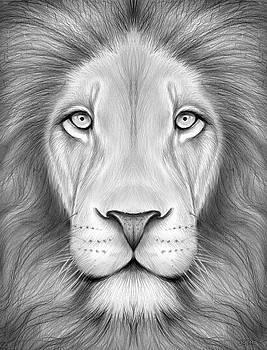 Greg Joens - Lion Head