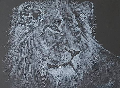 Lion by JoAnn Morgan Smith