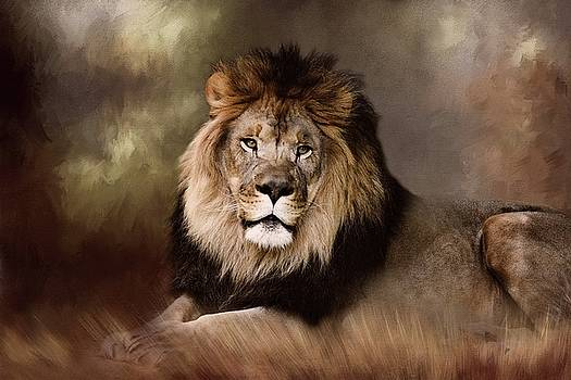 Lion King of the Jungle by TnBackroadsPhotos