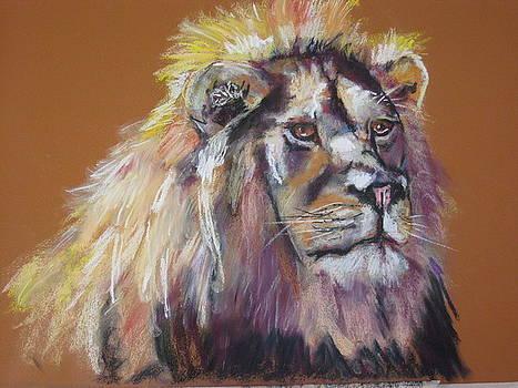 Lion King by Shirley Roma Charlton