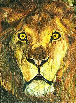 Lion by Lamark Crosby