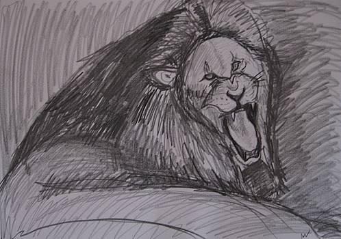 Lion by Luxmi Benjamin