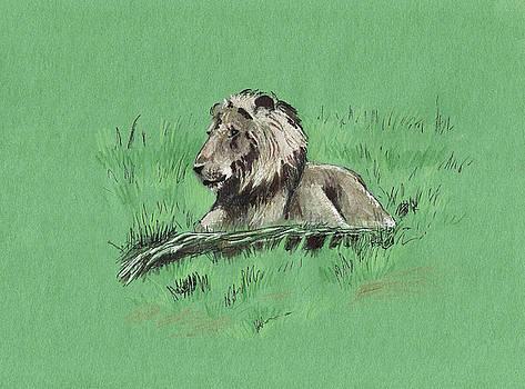 Lion on the Grass by Masha Batkova