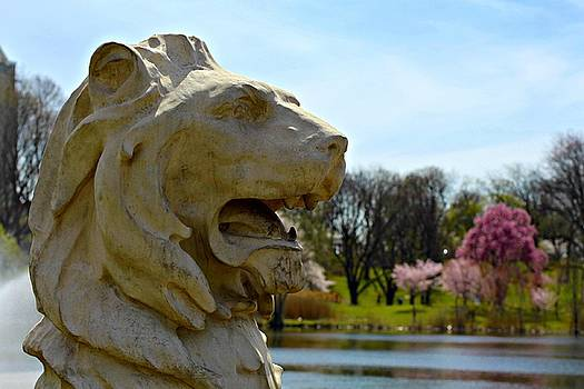 Andrew Davis - Lion Statue with Cherry Blossoms in Background