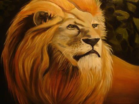 Lionardo by Linda Mungerson