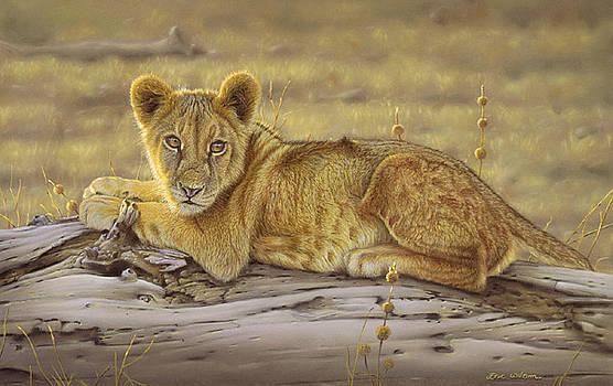 Lioncub by Eric Wilson