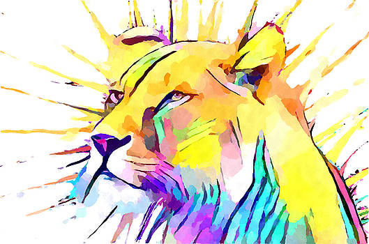 Lioness 3 by Chris Butler