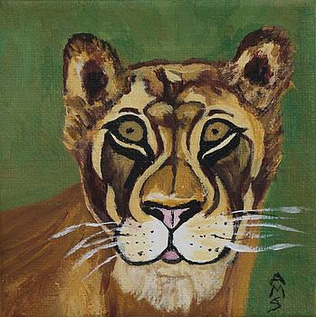 Lioness by Annette M Stevenson