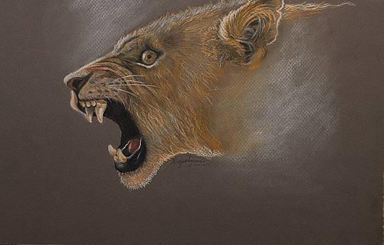 Lioness by Kodjo Somana