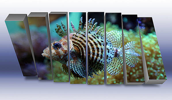 Lionfish Saltwater by Marvin Blaine