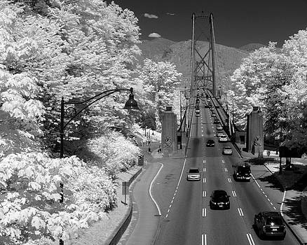 Lions Gate Bridge Summer by Bill Kellett