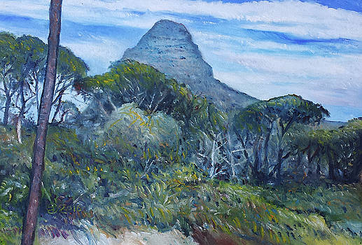 Lions Head Cape Town South Africa 2016 by Enver Larney