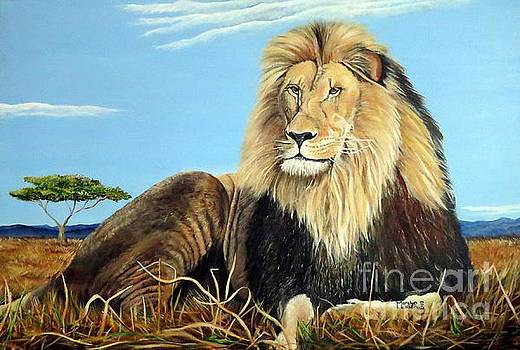 Lions Pride by Marilyn McNish