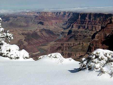 Lipan Point by Carrie Putz