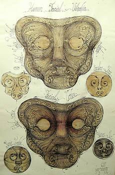 Liquid face standing wave by Gabriel Kelemen